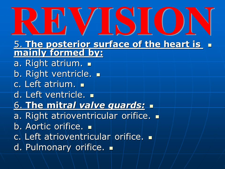REVISION 5. The posterior surface of the heart is mainly formed by: