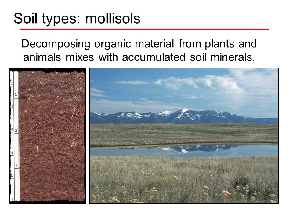 Soils ppt video online download for What are soil minerals