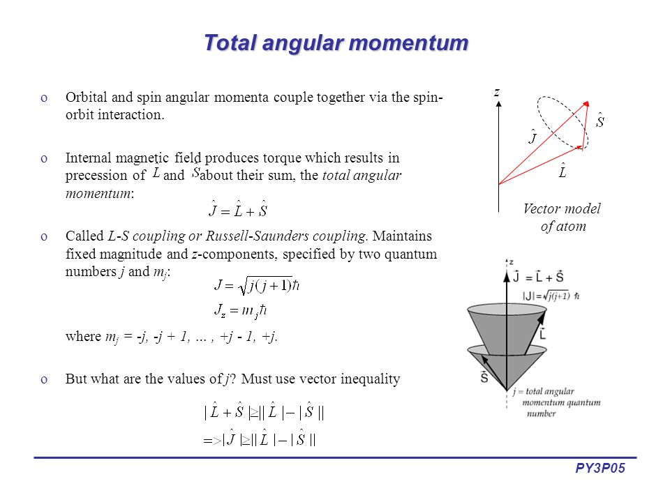 Lectures 5 6 magnetic dipole moments ppt video online download total angular momentum ccuart