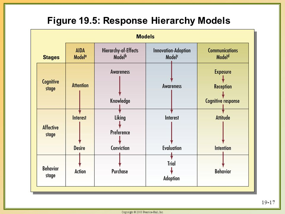 hierarchy models of customers responses to advertising How advertising works – aida and hierarchy of effects models to view this   these six steps can be split into three stages of consumer responses, cognitive.
