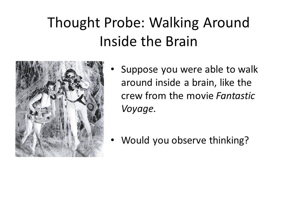 Thought Probe: Walking Around Inside the Brain