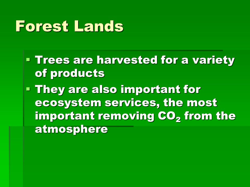 Forest Lands Trees are harvested for a variety of products