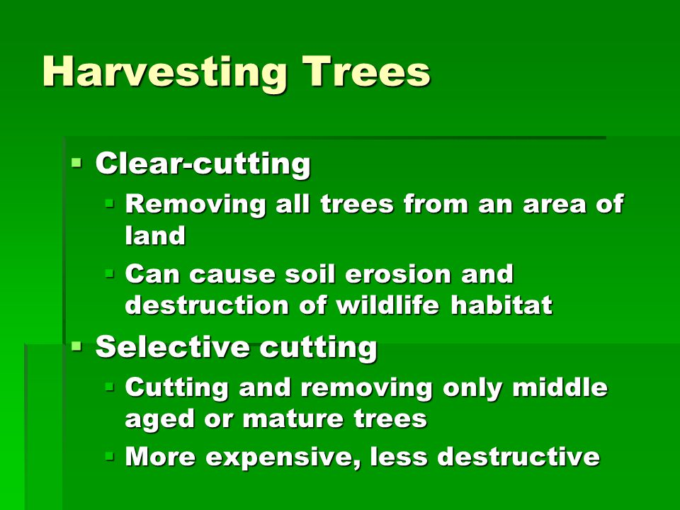Harvesting Trees Clear-cutting Selective cutting