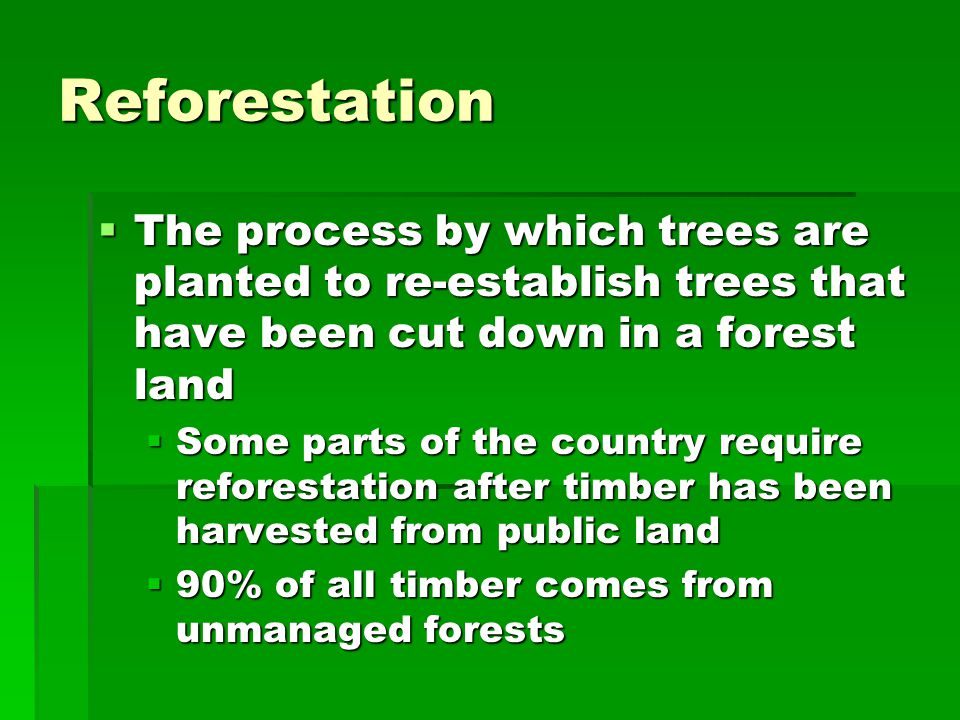 Reforestation The process by which trees are planted to re-establish trees that have been cut down in a forest land.