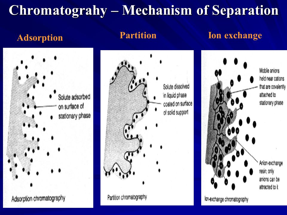 The separation processes that occur in paper chromatography? [i offer full rate need fast!]?