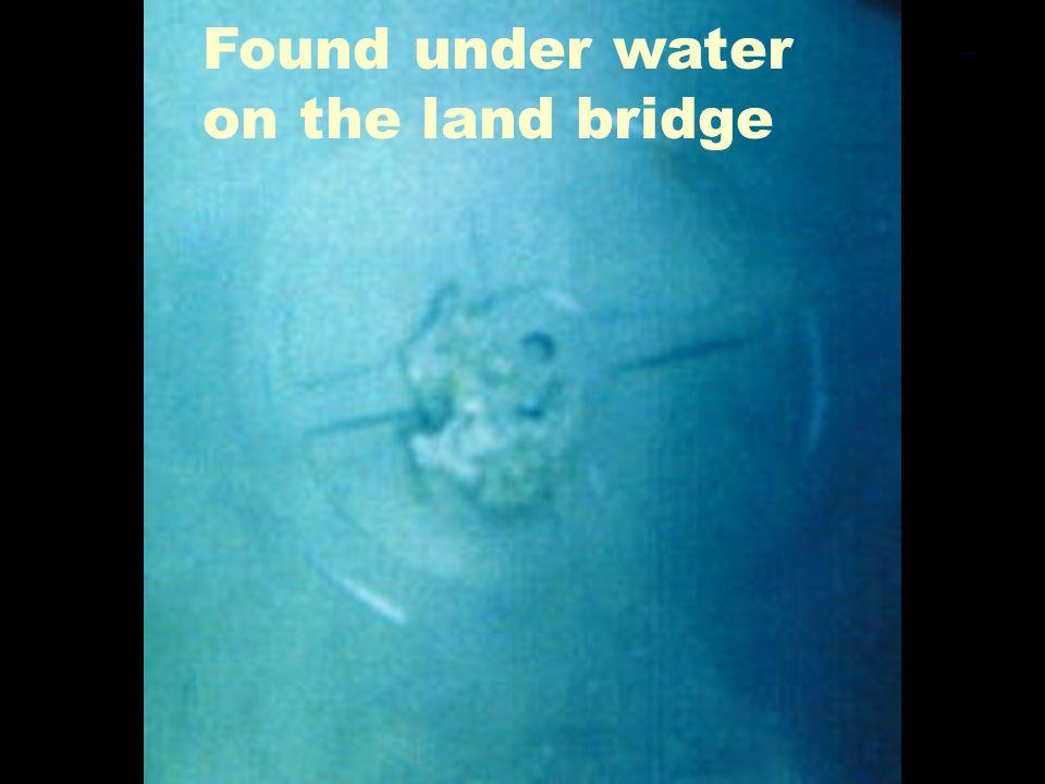 Found under water on the land bridge