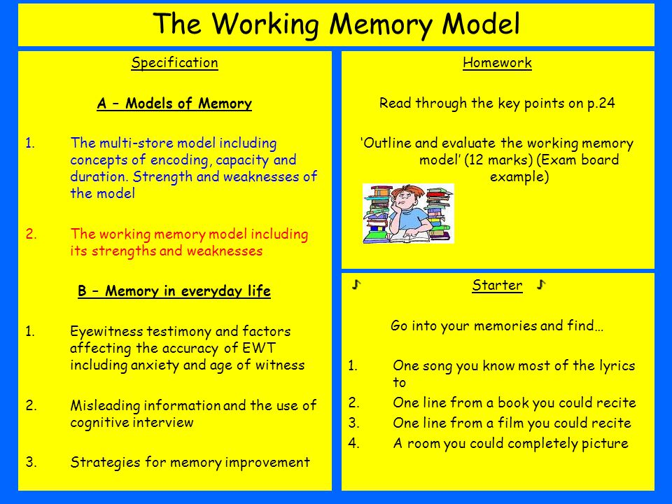 working memory model Working memory, its executive functions, and the models of working memory one provocative part of the tripartite working- memory model is the concept of the.