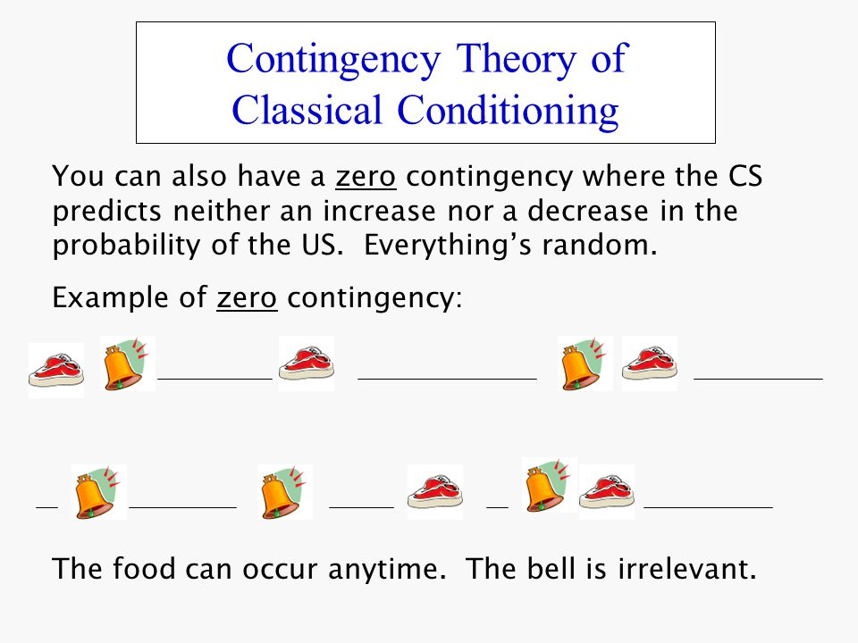 classical theory bureaucracy and contingency theories Organizational theory is the study of the structures of organizations four major theories contribute to this study -- classical theory, human relations or neo-classical theory, contingency.