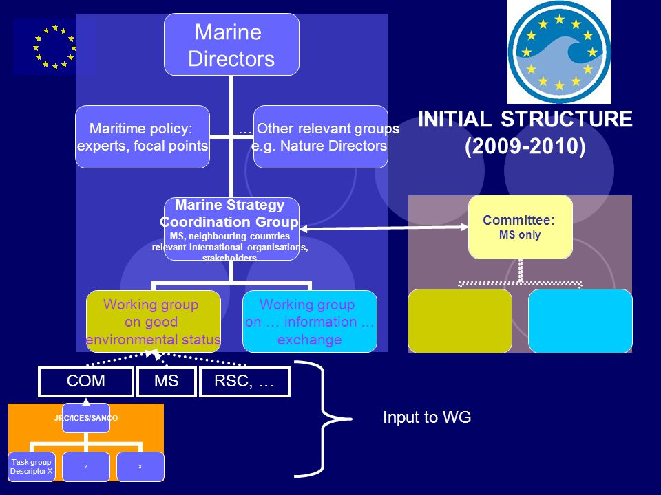 INITIAL STRUCTURE ( ) COM MS RSC, … Input to WG