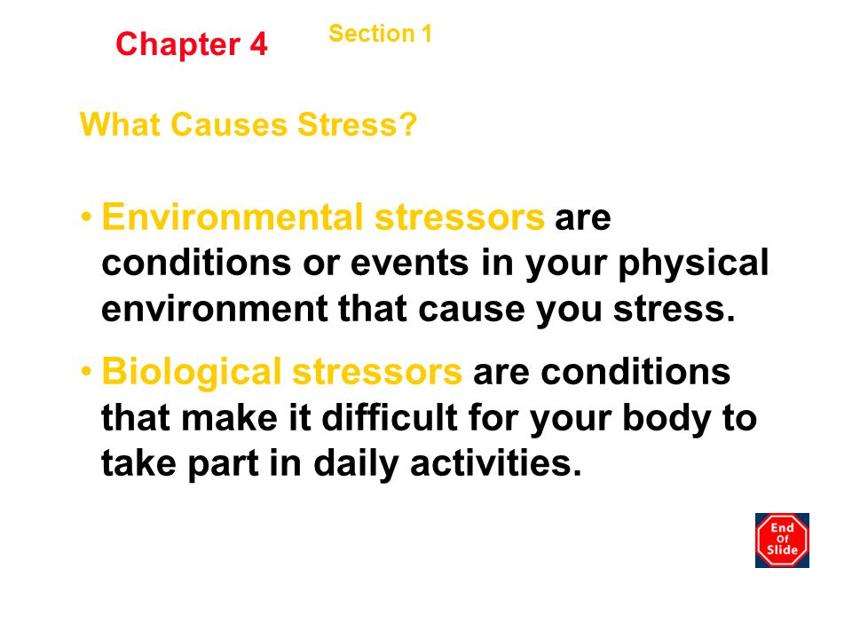 Chapter 4 Section 1 Stress and Your Health. What Causes Stress