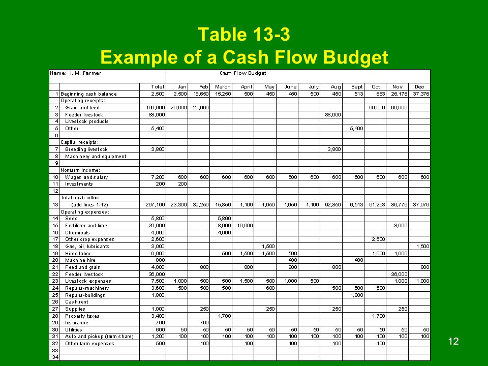 Chapter 13 Cash Flow Budgeting Ppt Video Online Download