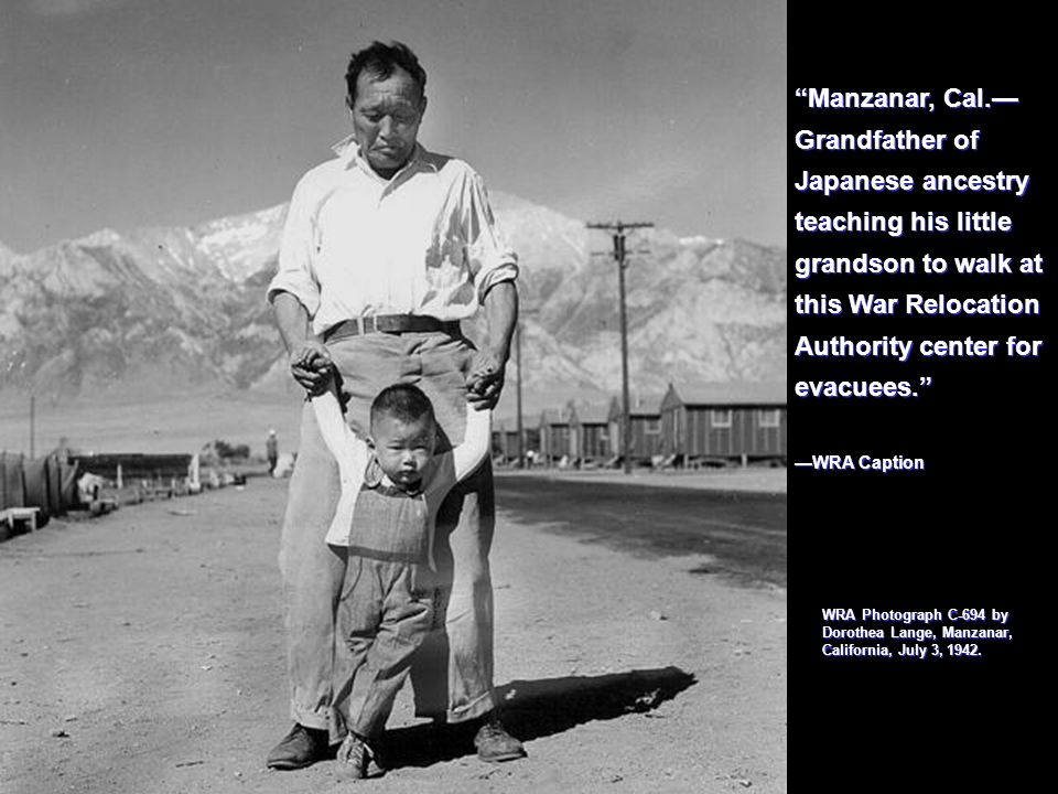 Manzanar, Cal.— Grandfather of Japanese ancestry teaching his little grandson to walk at this War Relocation Authority center for evacuees.