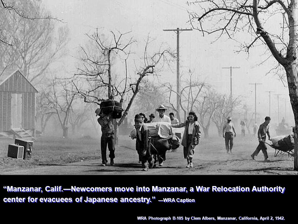 Manzanar, Calif.—Newcomers move into Manzanar, a War Relocation Authority center for evacuees of Japanese ancestry. —WRA Caption