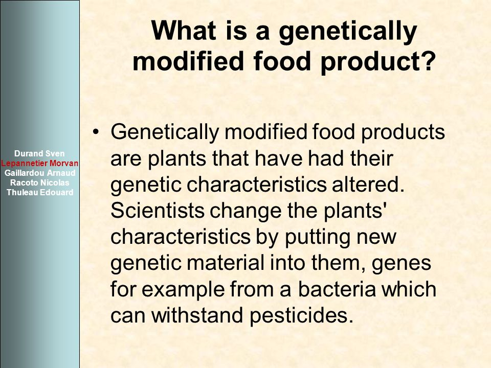 What is a genetically modified food product