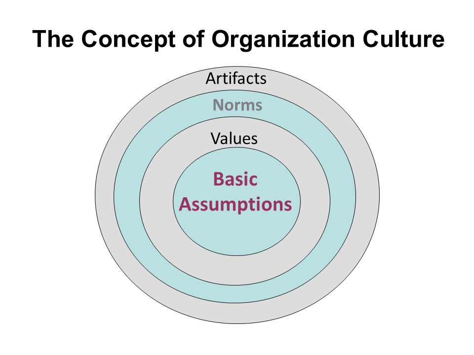 dimensions of culture underlying assumptions Trouble may arise if espoused values by leaders are not in line with the deeper tacit assumptions of the culture edgar schein.