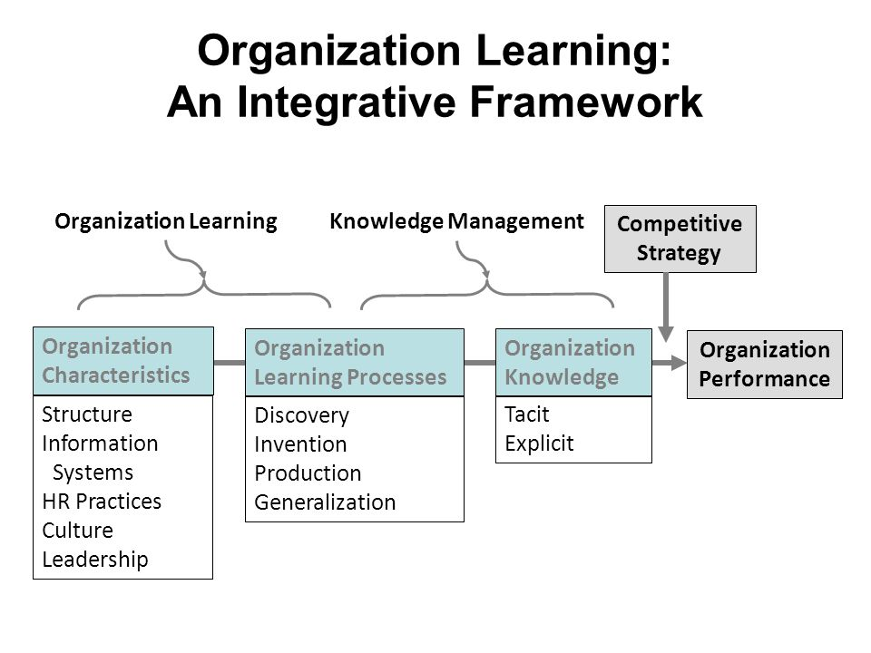 organisation learning Discover the importance of organizational learning to your company's flexibility and adaptation and find out how to achieve the best possible results.