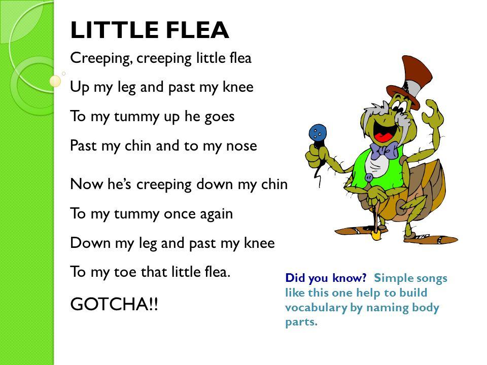 LITTLE FLEA GOTCHA!! Creeping, creeping little flea