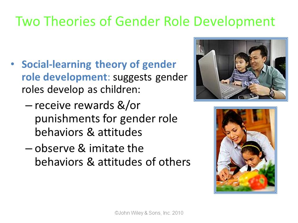Two Theories of Gender Role Development
