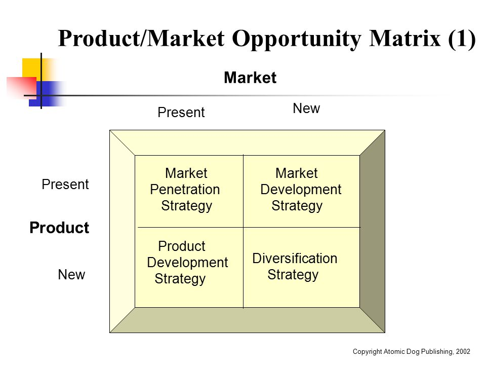 Product/Market Opportunity Matrix (1)