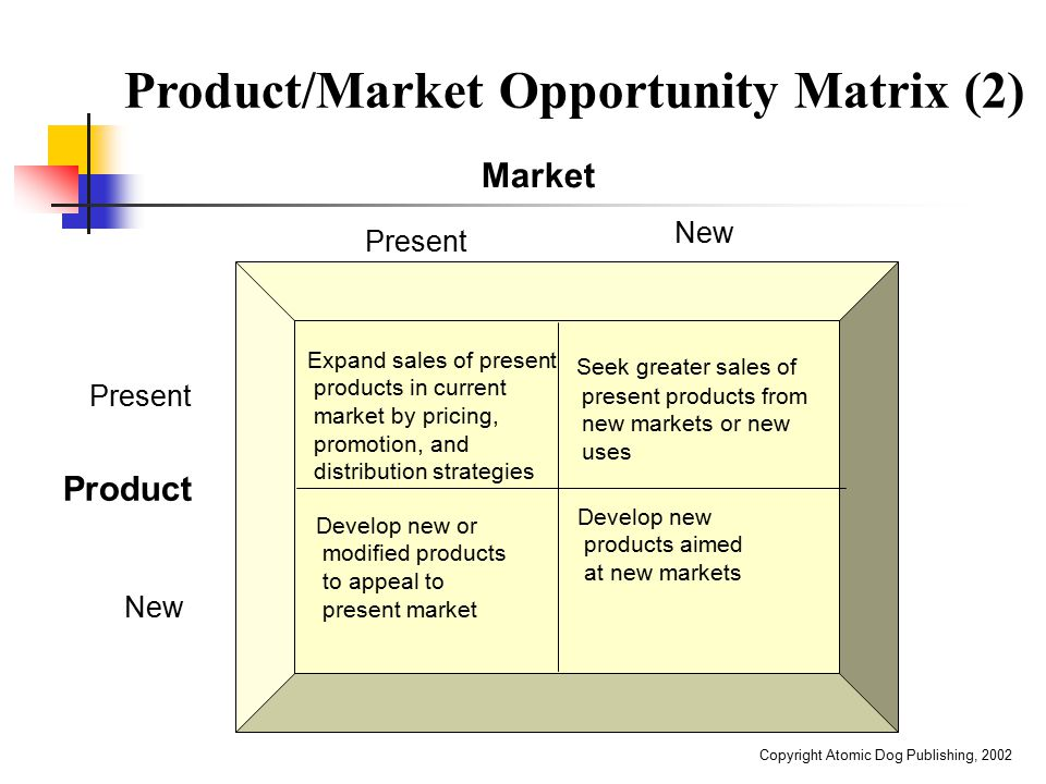Product/Market Opportunity Matrix (2)