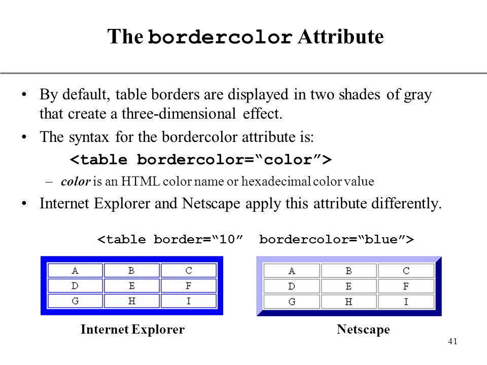 Using html tables ppt video online download for Html table border color