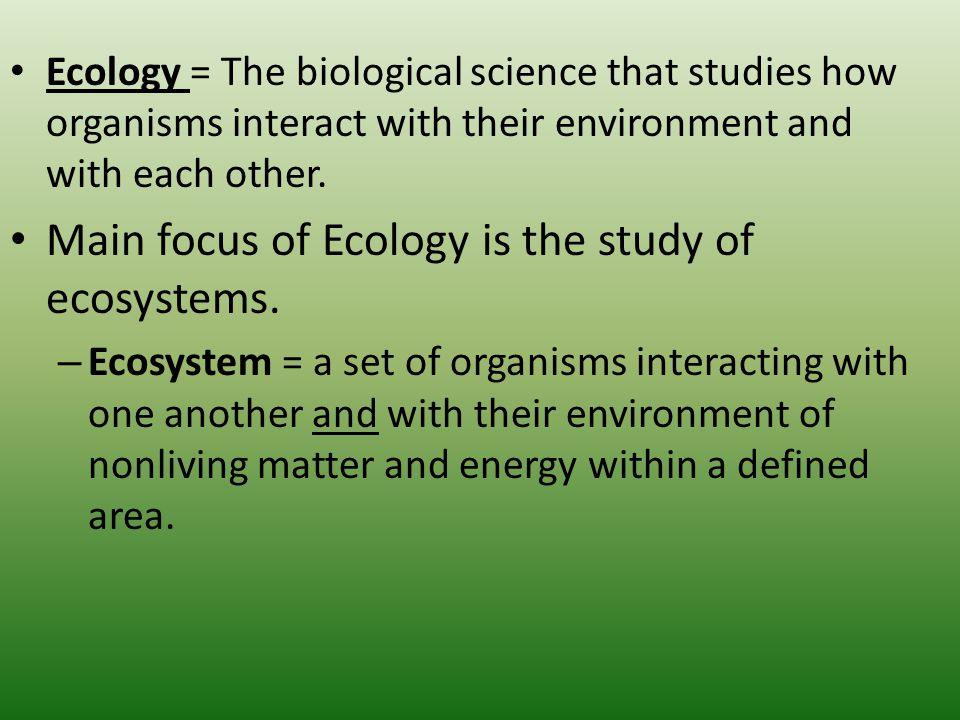 a study of ecology Study ecology degrees at the university of stirling.