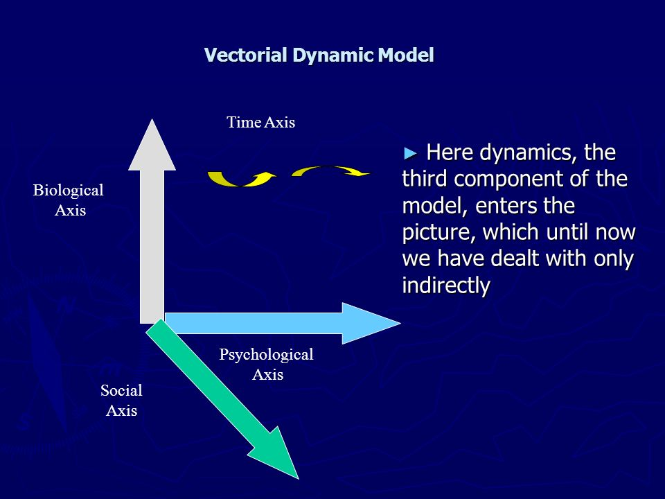 Vectorial Dynamic Model
