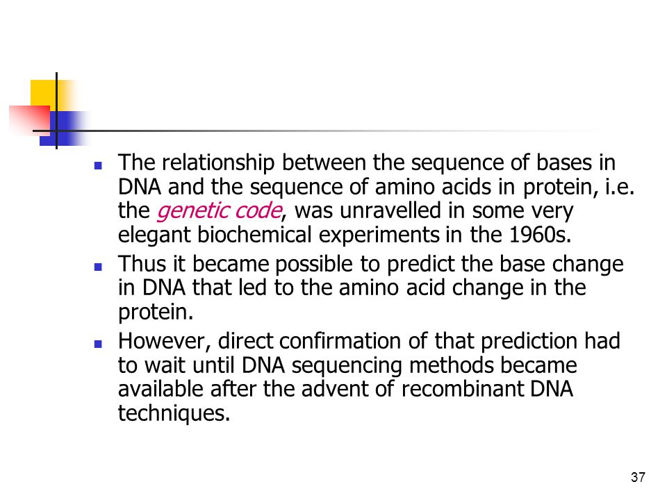 relationship between dna gene protein