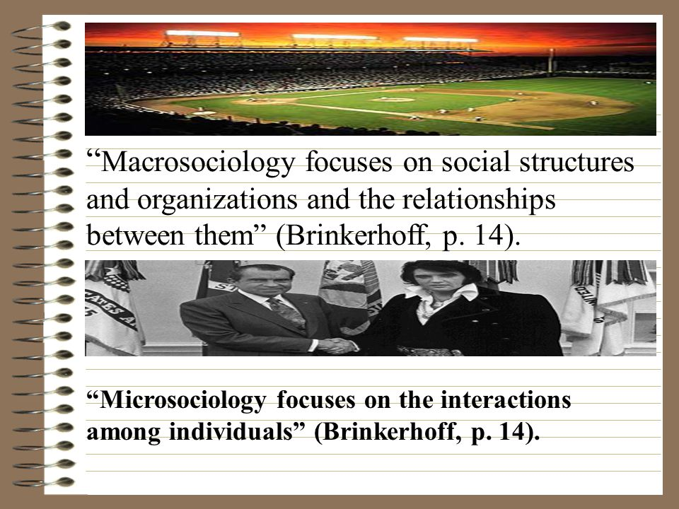 Macrosociology focuses on social structures and organizations and the relationships between them (Brinkerhoff, p. 14).