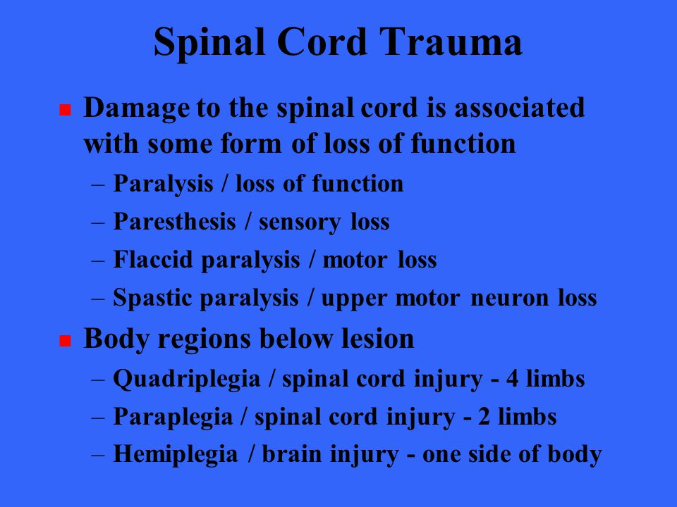 spinal cord trauma essay Read this essay on spinal cord injury come browse our large digital warehouse of free sample essays get the knowledge you need in order to pass your classes and more.