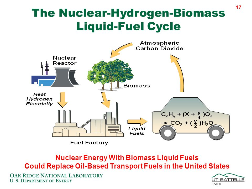 biomass cycle - photo #23