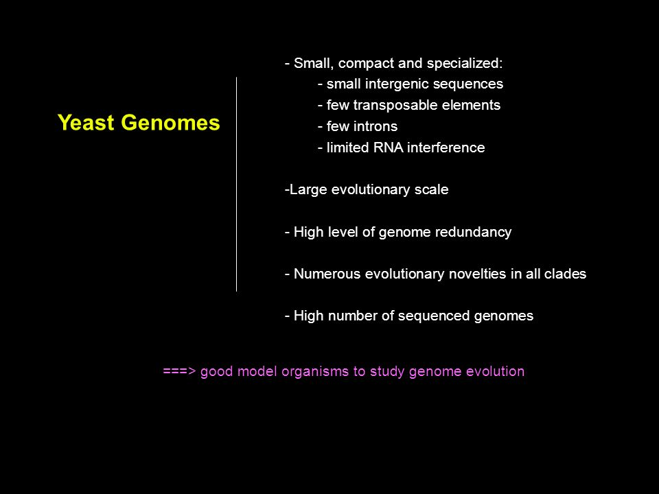 ===> good model organisms to study genome evolution