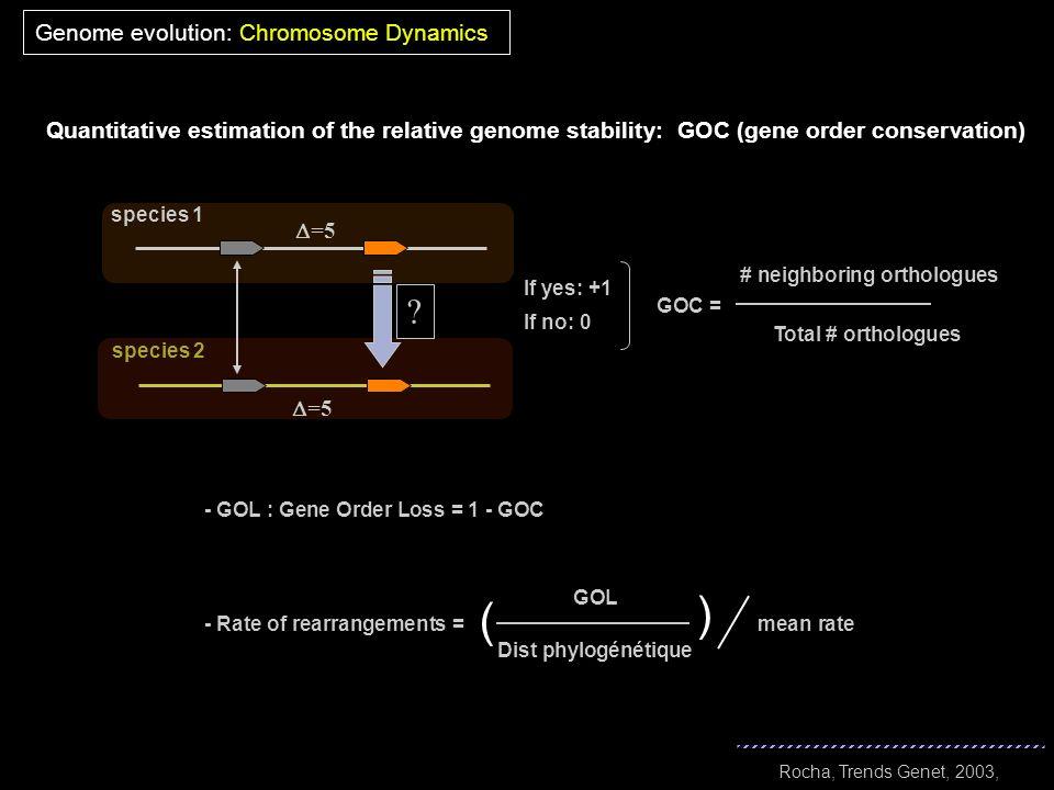 ( ( Genome evolution: Chromosome Dynamics