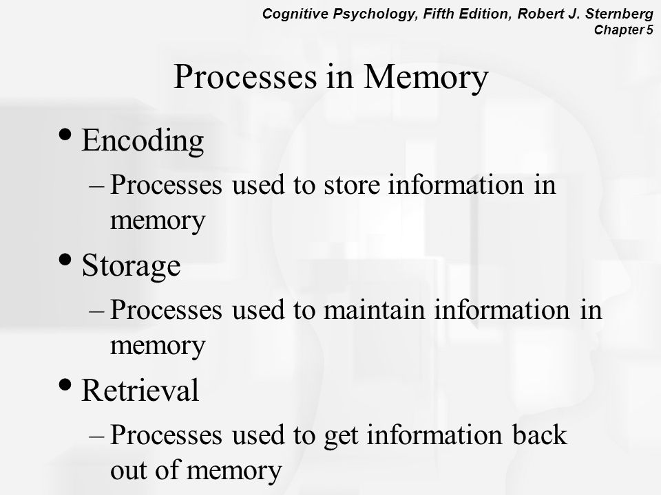 essay on memory retrieval