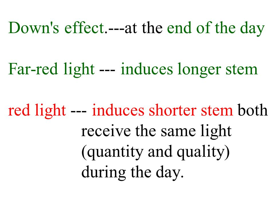 the effect of light quantity on The photoelectric effect works like this if you shine light of high enough energy on to a metal, electrons will be emitted from the metal.