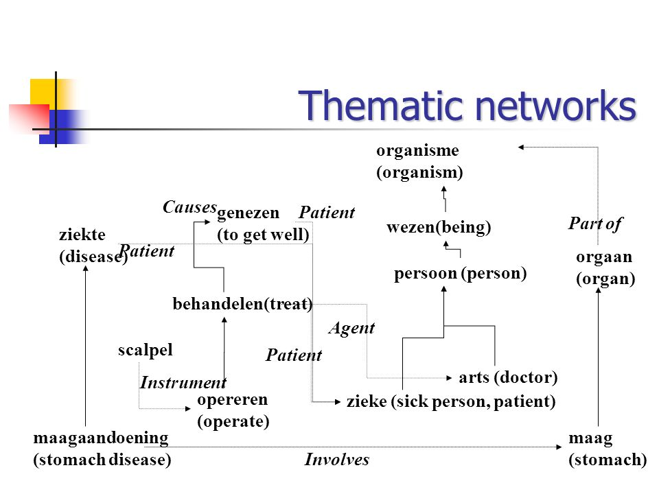 Thematic networks organisme (organism) Causes genezen (to get well)
