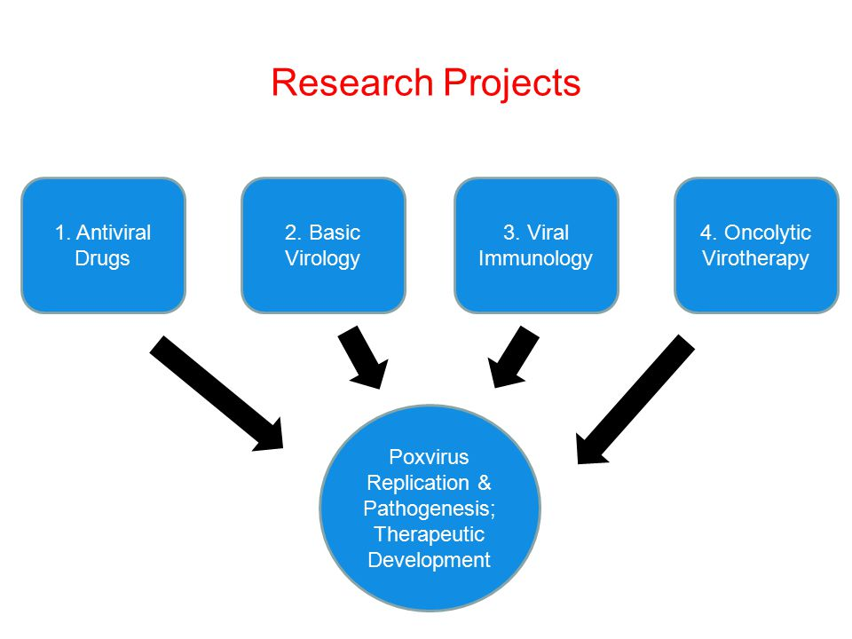 research project 1