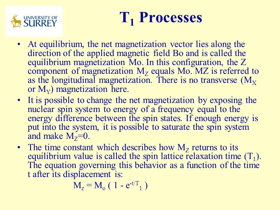 PH3-MI April 17, 2017. T1 Processes.