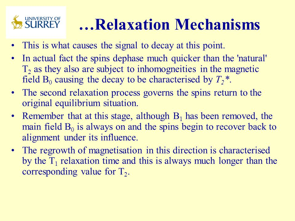 …Relaxation Mechanisms