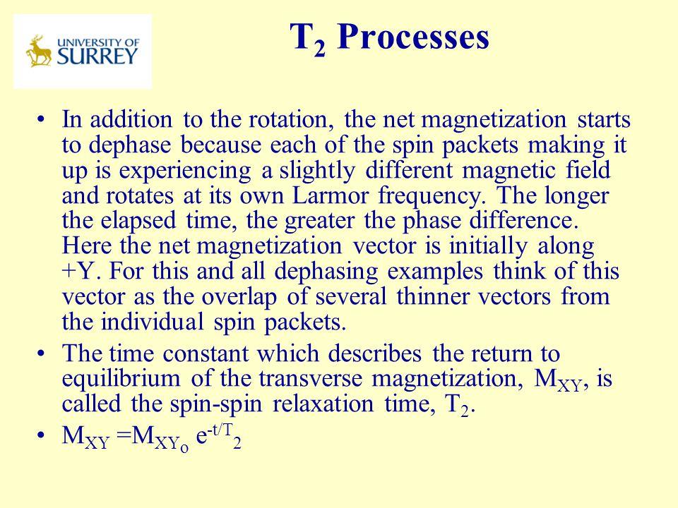 PH3-MI April 17, 2017. T2 Processes.