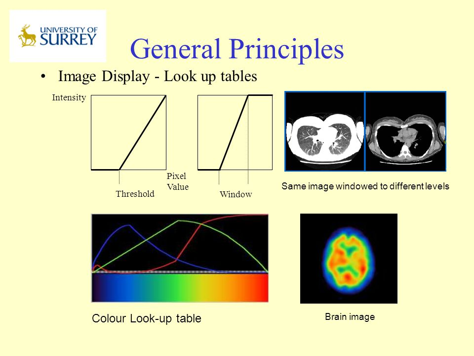 General Principles Image Display - Look up tables Colour Look-up table
