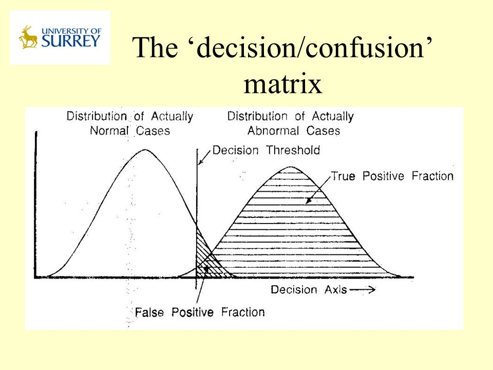 The 'decision/confusion' matrix