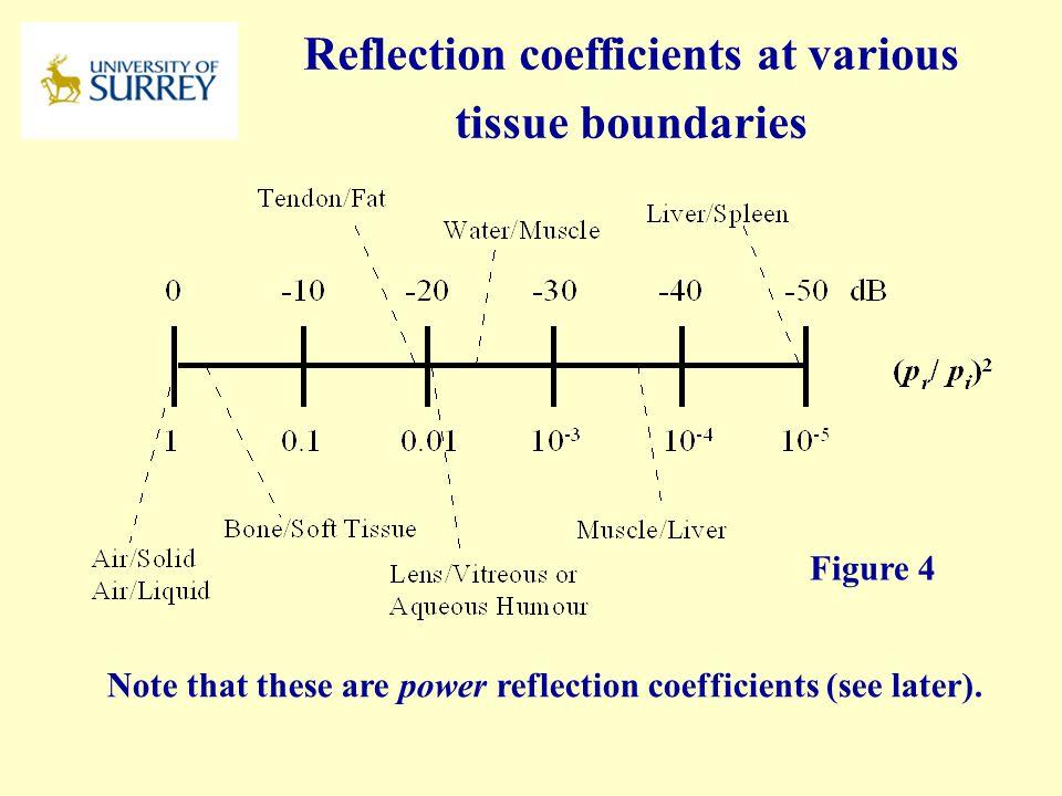 Reflection coefficients at various tissue boundaries