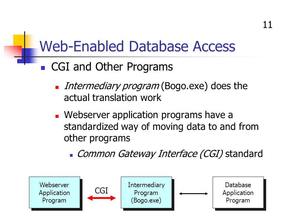 web enabled database essay Web enabled databases (web-db) - free download as powerpoint presentation (ppt), pdf file (pdf), text file (txt) or view presentation slides online.