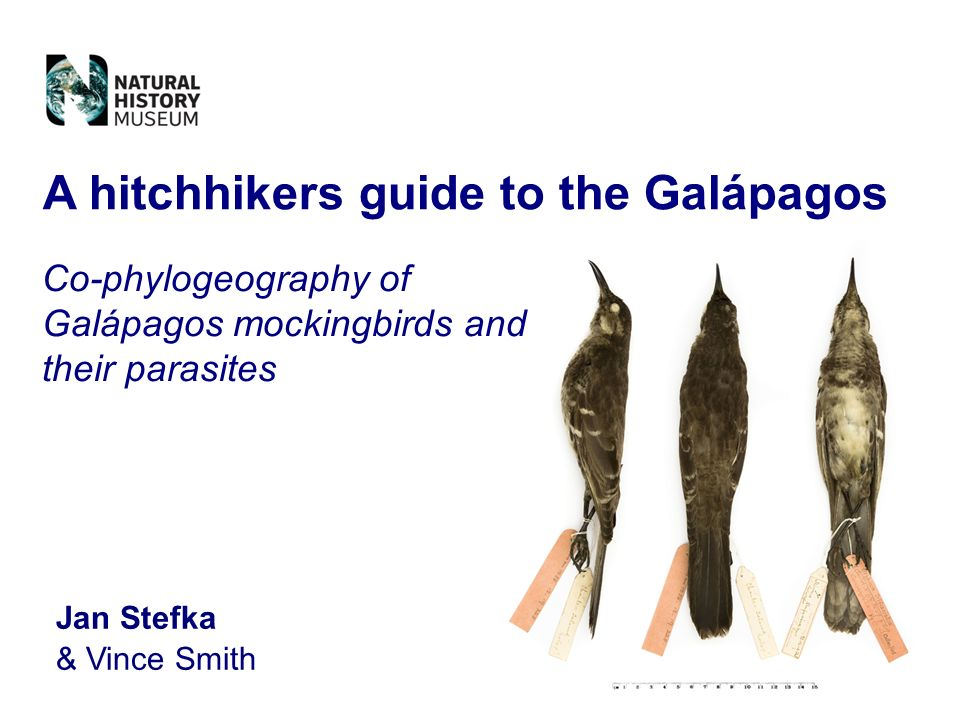 A hitchhikers guide to the Galápagos