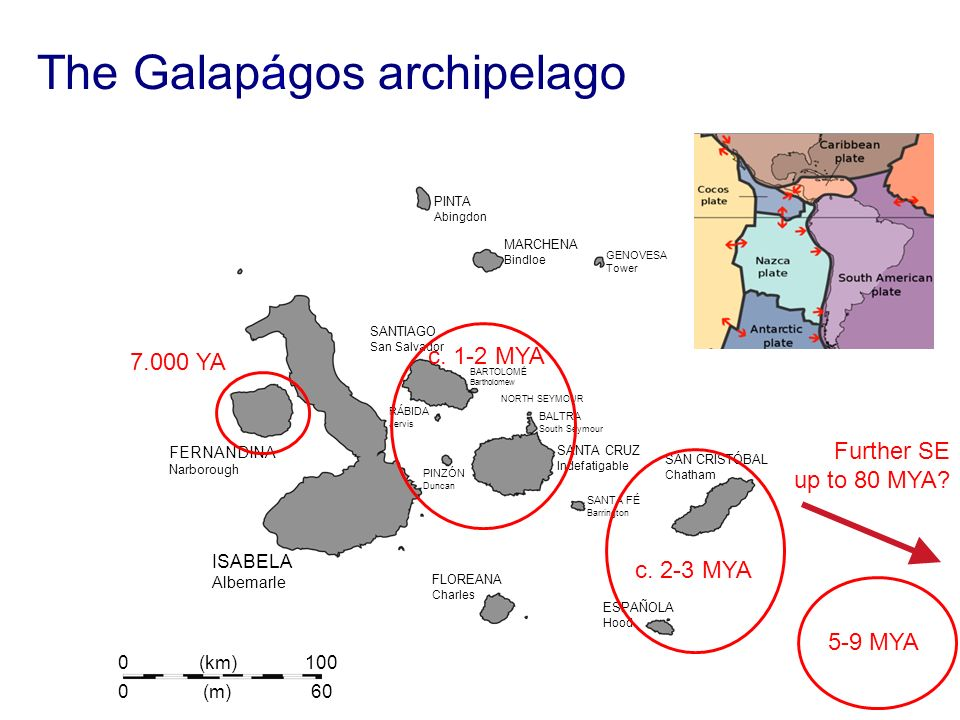 The Galapágos archipelago