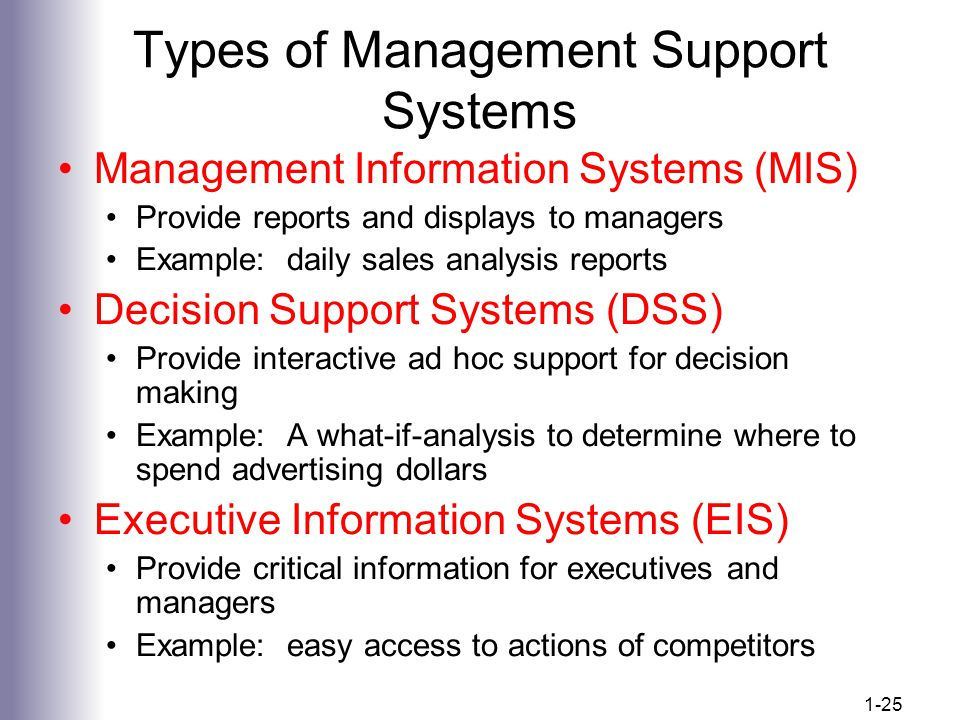 what is executive support system
