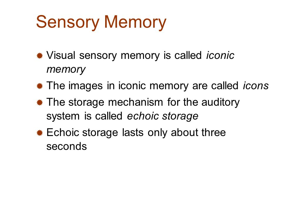 iconic and echoic memory essay memory is an important cognitive process which helps us to