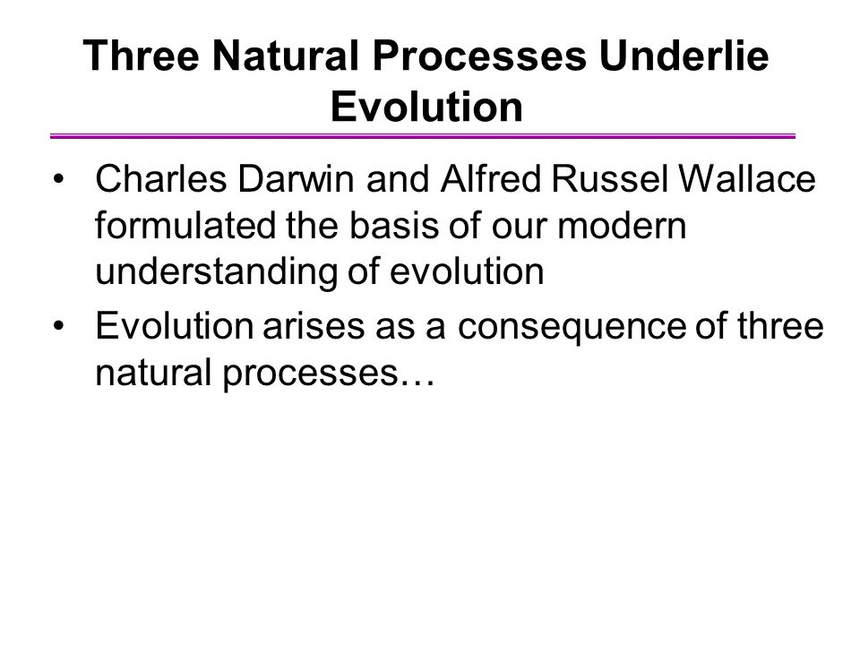 an understanding of the process of evolution In fact, both the clear expression and the understanding of the truths of scripture continually improve in a process analogous to evolution the truths themselves do not change or evolve it is their expression in human language and their subsequent understanding which evolves as scripture is transmitted from one edition to another.