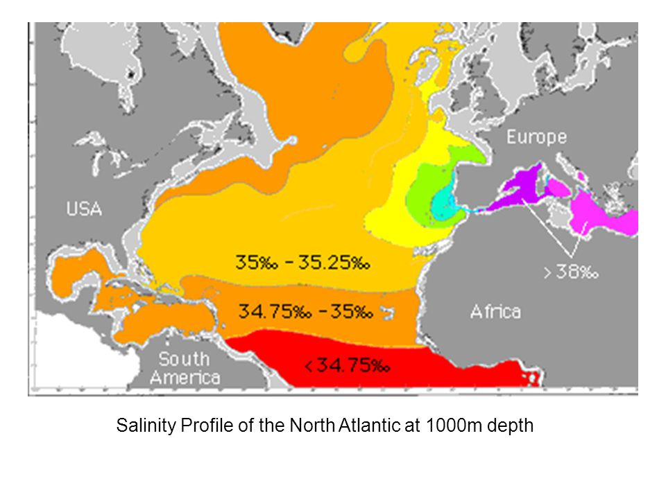 Salinity Profile of the North Atlantic at 1000m depth